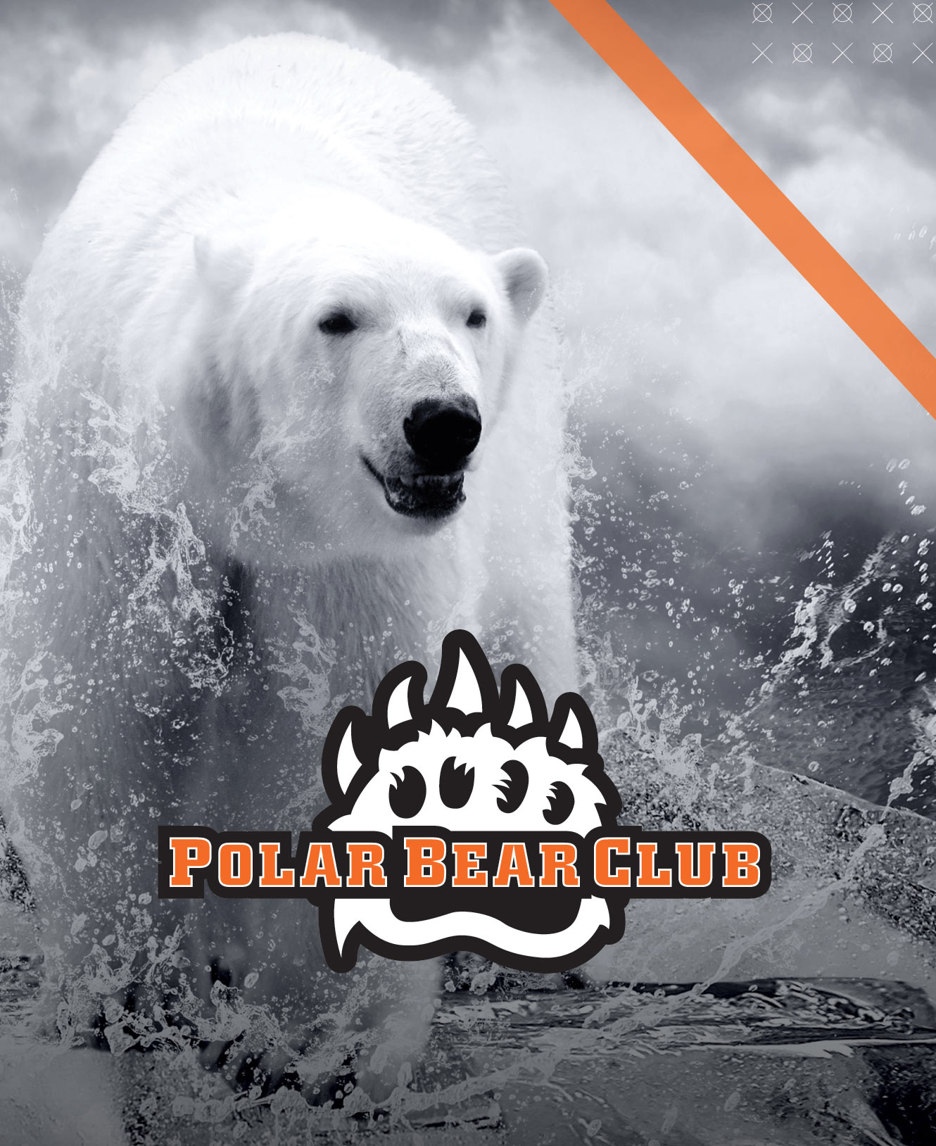 support onu polar bear club