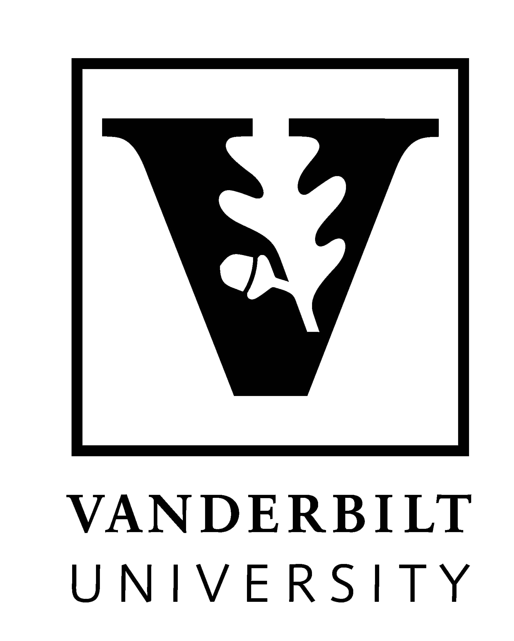 professional writing Vanderbilt logo
