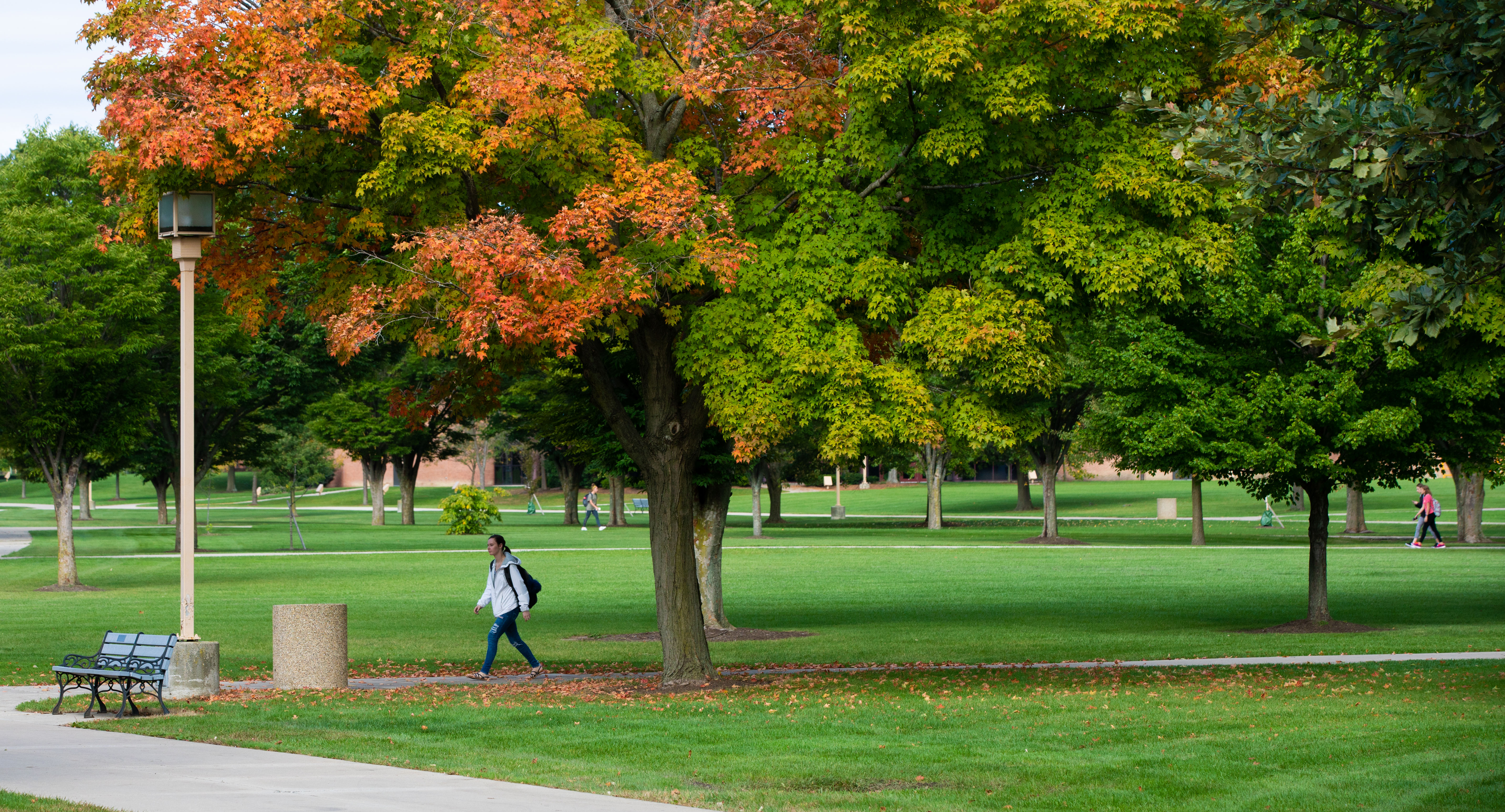Junior Amanda Sloan walks on the Tundra to McIntosh Center on the campus of Ohio Northern University.