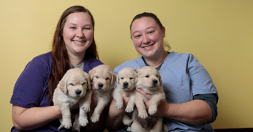 Sisters from left, Jessica (Dunham) Brinkman and Jaki (Dunham) Waggamon are photographed at 4 Paws For Ability in Xenia, Ohio.