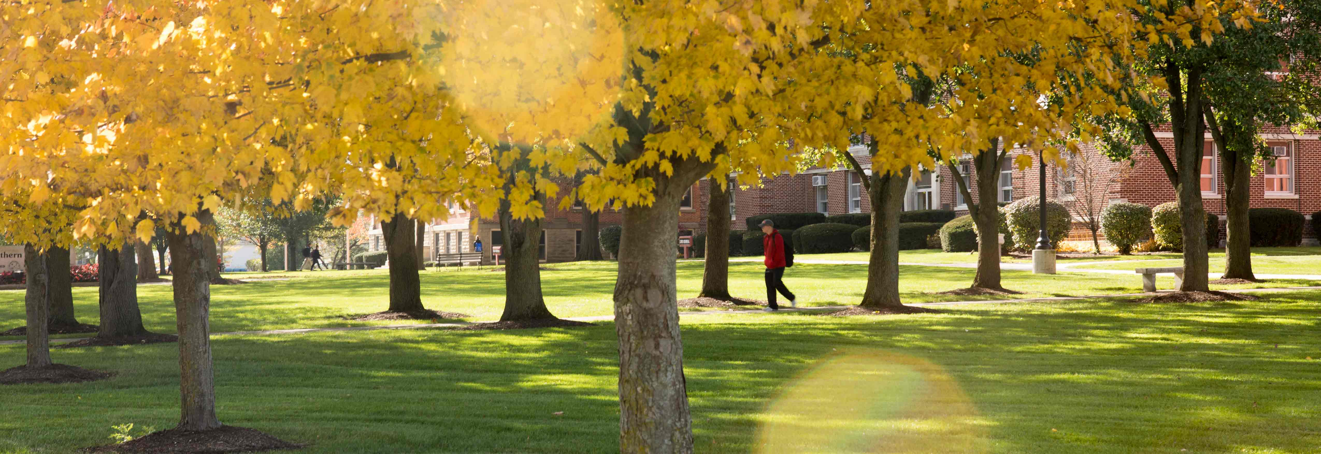 Student walks across the campus of Ohio Northern University.