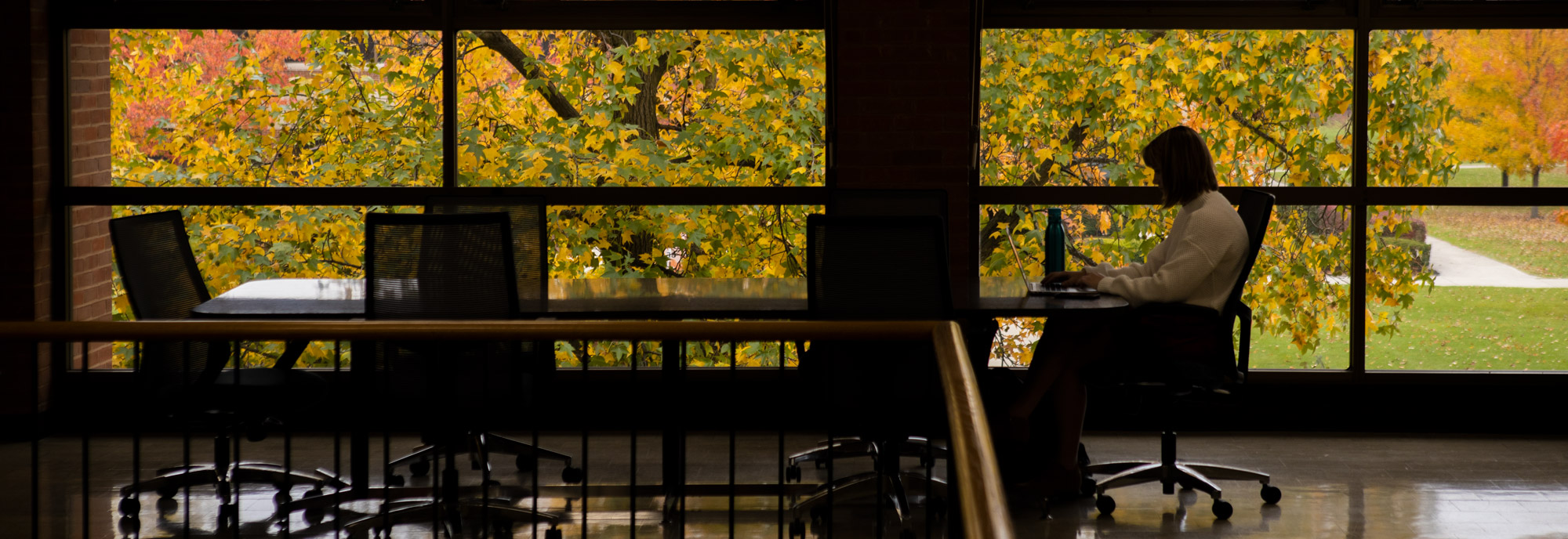 A student works in the Ohio Northern University College of Pharmacy. Fall leaves decorate the campus of Ohio Northern University.