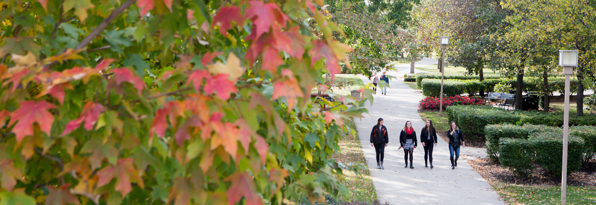 Students walking around campus in the fall.