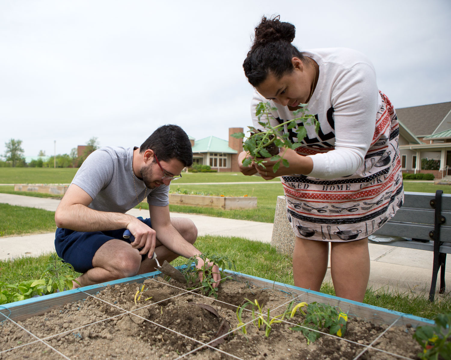 students plant seeds in affinity gardens.