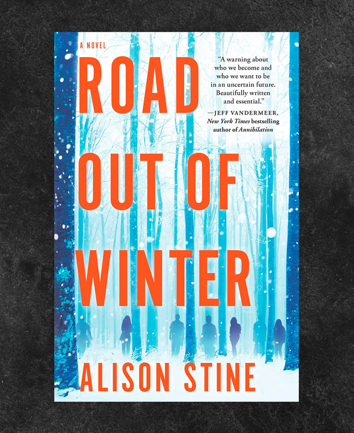 Road Out of Winter by Alison Stine book cover