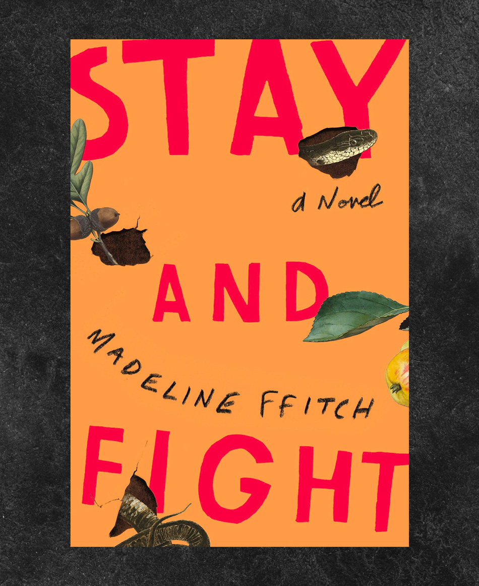 Stay and Fight by Madeline ffitch book cover